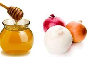 Лук с медом полезные свойства и противопоказания