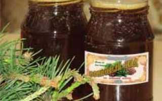 Сосновый мёд – это варенье из шишек и побегов