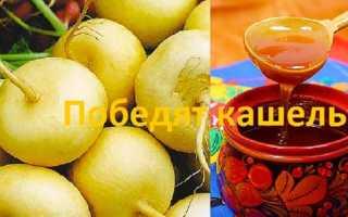 Репа с медом от кашля: рецепты