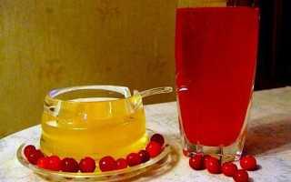 Калина с медом от кашля: рецепты и как принимать