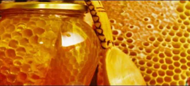 Срок годности меда и как его хранить в домашних условиях