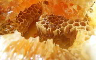 Лечение колита настойкой прополиса и мёдом