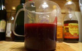 Калина с медом от кашля: рецепты для детей и взрослых