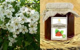 Боярышниковый мед полезные свойства