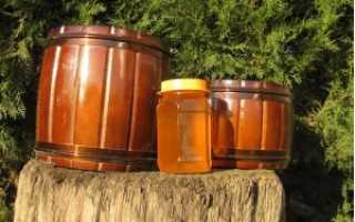 Полезные свойства и харатеристика лесного меда