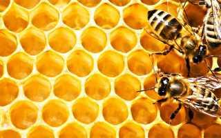Как проверить мед йодом, а также другими способами