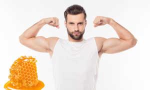 Шмелиный мёд: полезные свойства