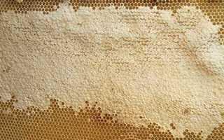 Натуральный мёд по госту