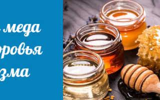 Почему мед полезен для организма женщины