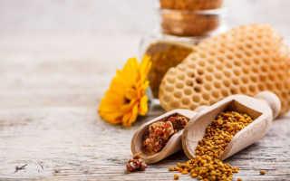 Пчелиная перга: свойства и состав