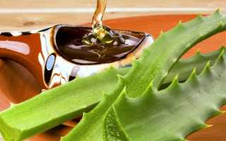 Как приготовить лекарство из алоэ и меда для желудка