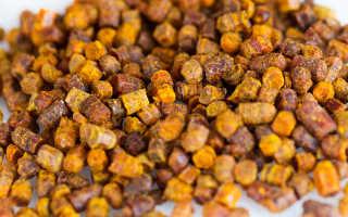 Перга пчелиная: полезные свойства, как принимать, от чего помогает