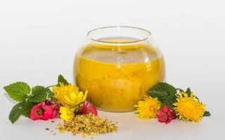 Мёд с пыльцой: полезные свойства и противопоказания, как принимать