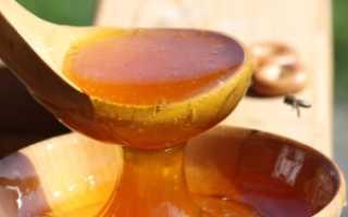 Почему забродил мед и что теперь с ним делать