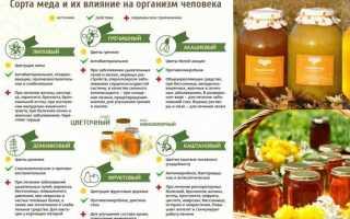 Как лечит мёд при вирусах
