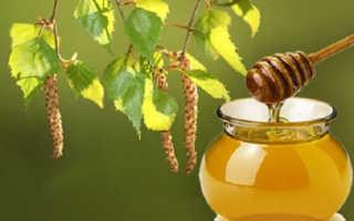 Мед березовый – что это такое, полезные свойства и рецепт приготовления