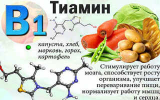 Если употреблять эти 10 продуктов, шансы забеременеть увеличатся