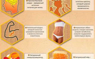 Мед серпуховый — полезные свойства